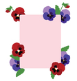 pansies frame vector image vector image