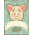 pig grunge vector image vector image