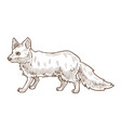 forest animal fox isolated sketch wild forest vector image vector image