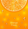 Orange Background with Slice and Drops vector image vector image