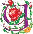 rosette letter Y vector image vector image