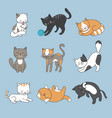 hand drawing cute cats kitty collection vector image
