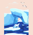 arctic ice landscape flat vector image