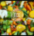 blurred background with vegetables and eco label vector image vector image