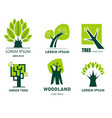 environment and ecology woodland and green tree vector image vector image