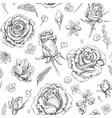 flowers sketch pattern vector image vector image