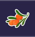 fresh juicy sea buckthorn icon tasty ripe fruit vector image