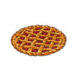 hand drawn cherry pie thanksgiving symbol food vector image vector image