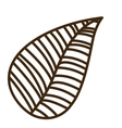 leaf drawing isolated icon design vector image