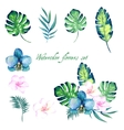 watercolor floral set for your design vector image vector image