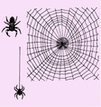 web and hanging spider vector image