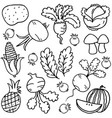 doodle of vegetable set hand draw vector image vector image