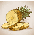 engraving pineapple slices in retro style vector image vector image