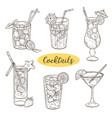 hand drawn cocktails vector image vector image
