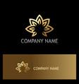 lotus flower gold logo vector image vector image