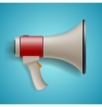 Megaphone for digital marketing concept vector image