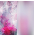 Set of abstract polygon triangles and blurred vector image vector image