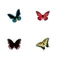 set of beauty realistic symbols with hypolimnas vector image