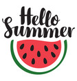 summer banner with inscription and watermelon vector image vector image