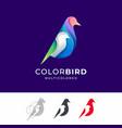 bird colorful logo vector image vector image