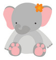 cute elephant on white background vector image vector image