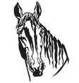 decorative portrait of trakehner horse-2 vector image vector image