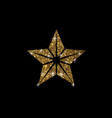 golden glitter review star icon on black vector image vector image