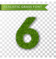 grass number six green number six isolated on vector image
