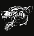 head of the ferocious wolf vector image