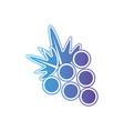 line delicious grape fruit nutrition vector image vector image