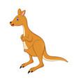 of cute cartoon kangaroo vector image