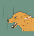portrait of fox on green background vector image vector image