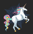 unicorn full colour horn pegasus artwork vector image vector image
