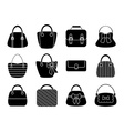 Collection of Female Bags vector image vector image