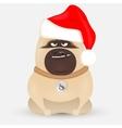 cute little bulldog vector image