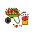 Garden Harvest vector image vector image