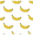 hand drawn banana fruit seamless pattern vector image