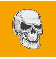 Isolated black and white smiling human skull vector image
