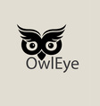 owl eye logo vector image vector image