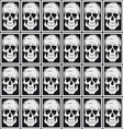 Skull pattern background vector image vector image