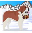 st bernard dog lifesaver in mountains vector image vector image