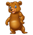 Cute bear standing isolated on white background vector image vector image