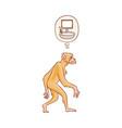 cute brown monkey walking in straight vector image