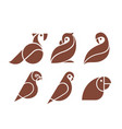 parrot love bird logo set design vector image