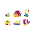 set of compositions with various sea algae corals vector image