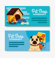 set poster pet shop veterinary with icons vector image vector image