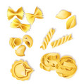 traditional italian pasta set vector image
