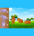 cartoon funny hippo collection set find the corre vector image vector image