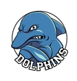 Dolphin logo mascot head with a title dolphins vector image vector image