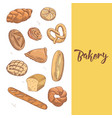 fresh bread hand drawn bakery design with buns vector image vector image